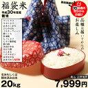 【福袋米】 20kg(10kg×2袋)【平成30年産:滋賀県産】 送料無料...