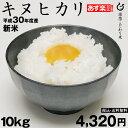 米お米キヌヒカリ10kg×1袋平成30年度滋賀県産きぬひかり