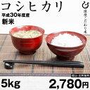 新米! コシヒカリ 5kg 2018 【平成30年産:滋賀県...