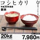 コシヒカリ 環境こだわり米 玄米のまま20kgまたは精米済み...