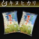 キヌヒカリ 環境こだわり米 10kg 【平成26年:滋賀県産】