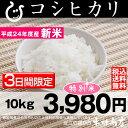 【新米:11月の特別米】 コシヒカリ 10kg【平成24年:滋賀県産】