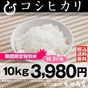 【期間限定:特別米】 コシヒカリ 10kg【平成24年:滋賀県産】