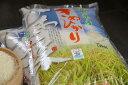 【新米!】キヌヒカリ 環境こだわり米 20kg(10kg×2袋もしくは5kg×4袋)【平成28年・滋賀県産】【送料無料】