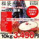 【お買い物マラソン】【福袋米 スペシャルパック】 白米5kg×2袋 【平成28年:滋賀県産】【送料無料】