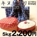 【新米!】キヌヒカリ 5kg【平成28年・滋賀県産】