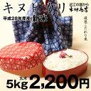 キヌヒカリ 環境こだわり米 玄米 5kg【平成28年・滋賀県産】