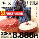 【9月の特別米:新米出荷開始♪】【新米!】キヌヒカリ 環境こだわり米 玄米のまま30kgもしくは精米済み白米27kg【平成28年:滋賀県産】