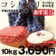 【新米!】コシヒカリ 10kg【平成28年:滋賀県産】あす楽対応♪【送料無料】