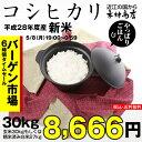 コシヒカリ 環境こだわり米 玄米のまま30kgもしくは精米済み白米27kg【平成28年・滋賀県産】【送料無料】