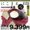 【スプリングセール】にこまる 『最高級品種』玄米のまま30kgもしくは精米済み白米27kg【平成28年・滋賀県産】