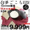 【新米!11月の特別米:第2弾】夢ごこち 環境こだわり米 玄米のまま30kgもしくは精米済み白米27kg【平成28年・滋賀県産】