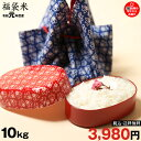 【福袋米】 白米 10kg 【令和元年:滋賀県産】【送料無料...