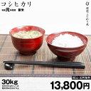 特A コシヒカリ 環境こだわり米 白米27kg 令和元年 滋賀県産 送料無料