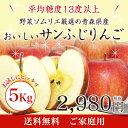 【送料無料】野菜ソムリエ厳選の青森県産のおいしいサンふじりんご 5kg【ご家庭用】※北海道及び離島へ