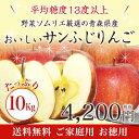 【送料無料】野菜ソムリエ厳選の青森県産のおいしいサンふじりんご たっぷり10kg【ご家庭用】【お徳用