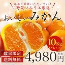 【送料無料】【たっぷりお徳用10kg箱】...