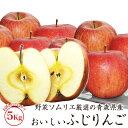 【送料無料】野菜ソムリエ厳選の青森県産のおいしいふじりんご ...
