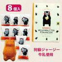 【くまもと ミルク&バターフィナンシェ・8個入・個包装】阿蘇...