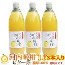 ビター、キレ味の良い大人ジュース。焼酎割り!濃厚100%果汁 愛媛河内晩柑ストレートジュース3本(1本1000mlx3) 完熟のみごろ