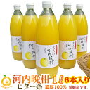 ビター キレ味の良い大人ジュース。焼酎割り!濃厚100 果汁 愛媛河内晩柑ストレートジュース6本(1本1000mlx6) 完熟のみごろ