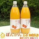 甘み濃厚/濃厚100%果汁 愛媛ぽんかんストレートジュース2本 (1本1000mlx2) 完熟のみごろ