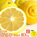1月13日発送開始/超低刺激、淡白な味。愛媛産はるか10kg 【送料無料(北海道沖縄+500円】