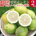 愛媛産訳ありレモン2キロ【ノーワックス】【ノー防腐剤】