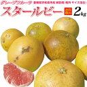 早期収獲の為、酸味高【送料無料】愛媛産 訳ありスタールビー2kg(グレープフルーツ