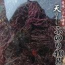 28年産【2個迄レターパック利用可】【愛媛県宇和海...