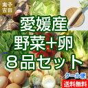 【送料無料】愛媛産EM卵と野菜セット おまかせ8品