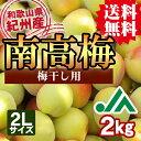 【送料無料】<梅干し用>紀州産南高梅(2Lサイズ) 2kg ...