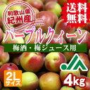 【送料無料】<梅酒用・梅ジュース用>パープルクィーン(2Lサ...