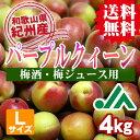 【送料無料】<梅酒用・梅ジュース用>パープルクィーン(Lサイ...