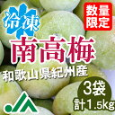 氷梅 冷凍南高梅(梅酒用・梅ジュース用) 1.5kg(500g×3袋) ☆和歌山県紀州産青梅 冷凍
