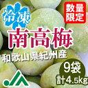 氷梅 冷凍南高梅(梅酒用・梅ジュース用) 4.5kg(500g×9袋) ☆和歌山県紀州産青梅 冷凍梅
