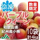 冷凍パープルクイーン(梅酒・梅ジュース用) 400g 10袋 ☆和歌山県紀州産青梅 小梅 冷凍梅