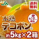【送料無料】木熟 デコポン® 約5kg(18〜20玉入り) 2箱 秀品★糖度13度以上!光センサーで厳選した甘くてジューシーなみかん♪