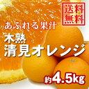 【送料無料】木熟清見オレンジ 約4.5kg(18玉入り) 1箱 ★まるで食べるオレンジジュース♪果汁たっぷり!人気のみかんです☆ムッキーちゃんプレゼント!