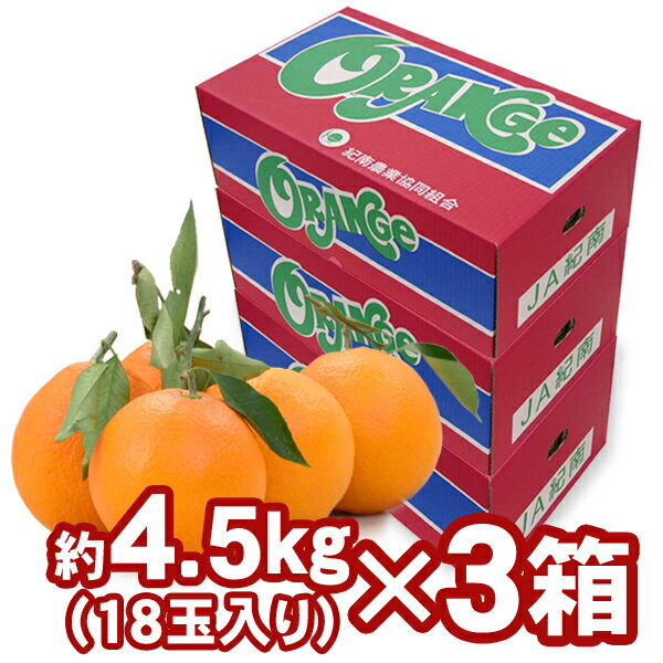 【送料無料】木熟ネーブル 約4.5kg(18玉...の紹介画像2