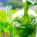 抹茶風味 青汁 青汁 大麦若葉 国産抹茶(九州) 箱なし 3g×250袋 まとめ買い 大袋 お買い得