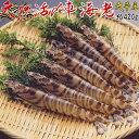 車海老 活〆 天草産 熊本 天然 国産 約20g ke91102