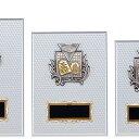 表彰楯(将棋) K-1166C ★高さ230mm《H-4》★名入れ彫刻無料 将棋大会 優勝トロフィー