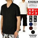 Tシャツ メンズ 大きいサイズ Vネック 半袖 無地 テレコ素材 夏 白 黒 青 赤 綿 大きい 春 半袖Tシャツ コットン VネックTシャツ シャツ ブランド