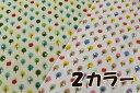ダブルガーゼ カラフルなリンゴの森【50cm単位販売 メール便2mまで】【コットン/生地/布地/布/Wガーゼ/ベビー/フルーツ/スタイ】(CO23)