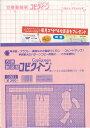 方眼製図紙コピクィーン 3枚入【サン・プランイング/製図/型紙/パターン】【メール便OK】(KI21)