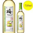 サントネージュ 梅ワイン 720ml やや甘口
