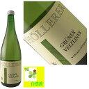 アロイス・ヘレラー グリューナー・ヴェルトリーナー 1L 【アロイス・ヘレラー グリューナー・ヴェルトリーナー オーストリアワイン カンプタル】
