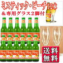 ミスティック ピーチ 330ml瓶12本&グラス2脚セット MYSTIC 【ベルギービール フルーツビール】