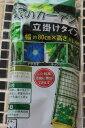 □ 緑のカーテン立てかけタイプ